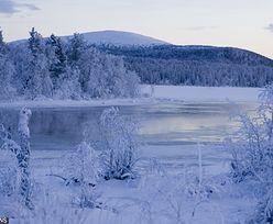 Pogoda w Laponii szaleje. W ciągu doby temperatura wzrosła o 40 stopni