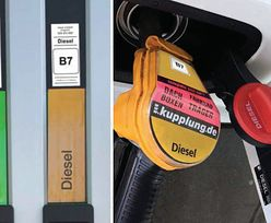 Nowe oznaczenia paliw na stacjach i w samochodach. Już od października