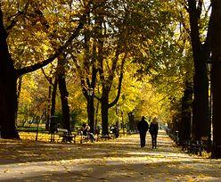 Wymarzona pogoda na jesień. Ciepłe dni jeszcze się nie kończą