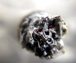 Tych papierosów możesz już nie zapalić