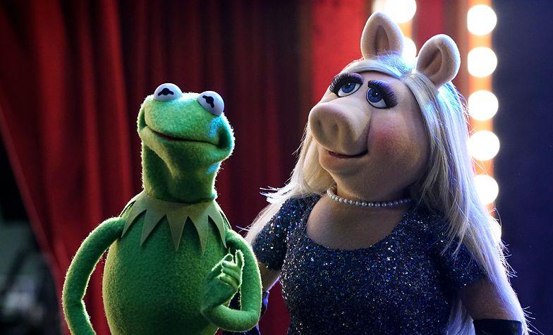 """Nowa odsłona """"The Muppet Show"""" na antenie TV Puls"""