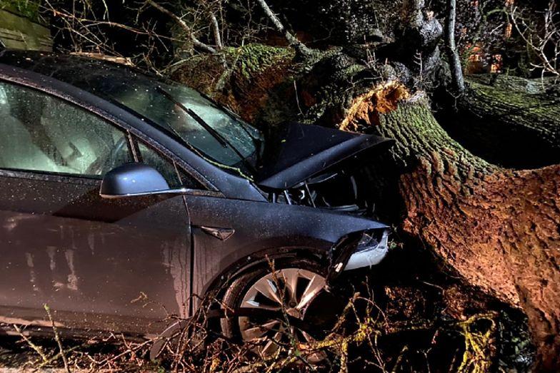 Auto zostałoby zmiażdżone. Tesla uratowała rodzinie życie