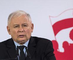 Płaca minimalna. Paweł Kukiz ostrzega: Jarosław Kaczyński jak Edward Gierek