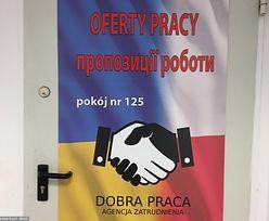 Polska przyciąga tymczasowych pracowników z Ukrainy i Azji. Idziemy na rekord
