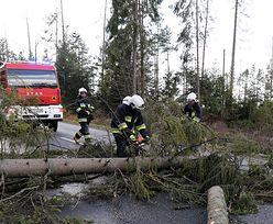 Silny wiatr na południu Polski. Wiele domów bez prądu