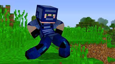 Rozchodniaczek: Minecraft to prawda, Minecraft to życie