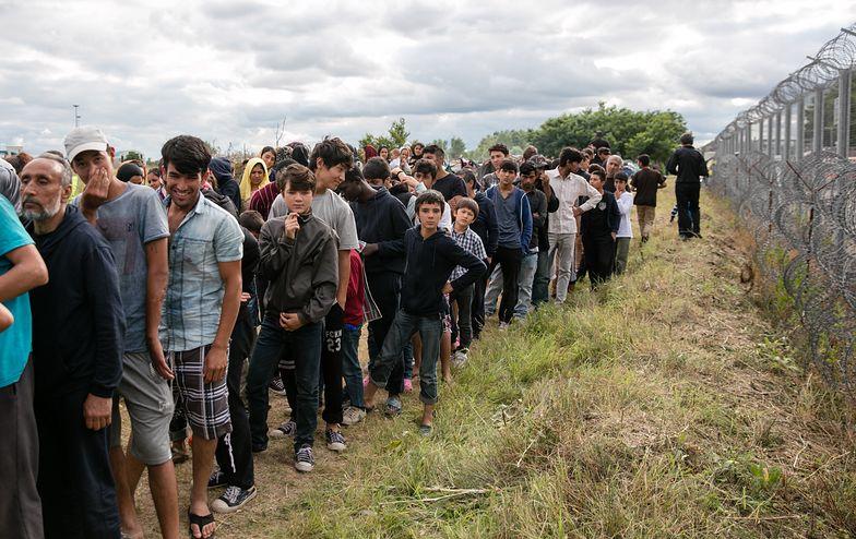 A jednak! ONZ wyliczyło, ilu jest uchodźców wśród imigrantów