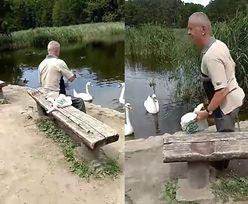 Porywacz kaczki z Poznania zatrzymany