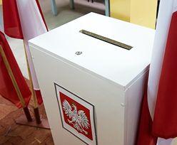 Wybory samorządowe: Krzysztof Krawczyk się rozmnożył. Robert Lewandowski również