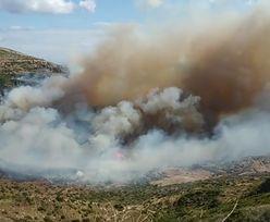 Pożary w Grecji. Ewakuowano Polaków