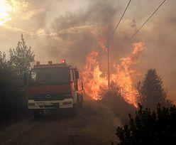 Pożary w Grecji. 60 ofiar śmiertelnych, 200 rannych. Zginęło dwoje Polaków