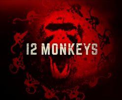 Czy znasz dobrze serial 12 małp?
