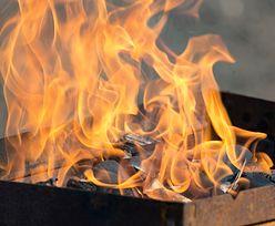 Rozpalali grilla. Zajął się dom sąsiadów