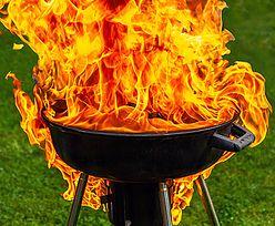 Co ty wiesz o grillowaniu?