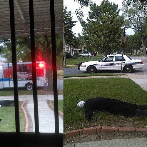 Ludzie dzwonili na policję. Myśleli, że to zwłoki