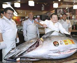 Najdroższa ryba świata. Tuńczyk sprzedany za 3,1 mln dolarów
