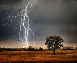 Ostrzeżenia przed burzami dla trzech województw. Już grzmi