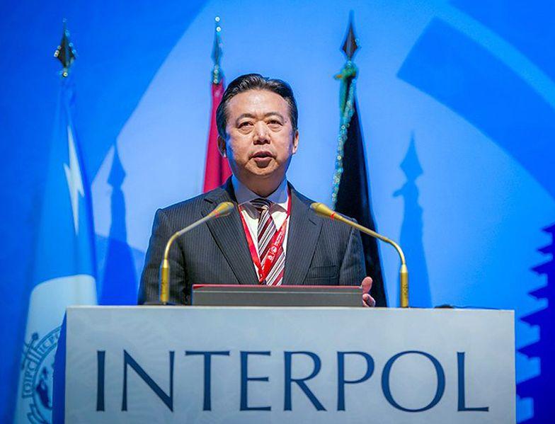 Meng Hongwei został szefem Interpolu w 2016 r.