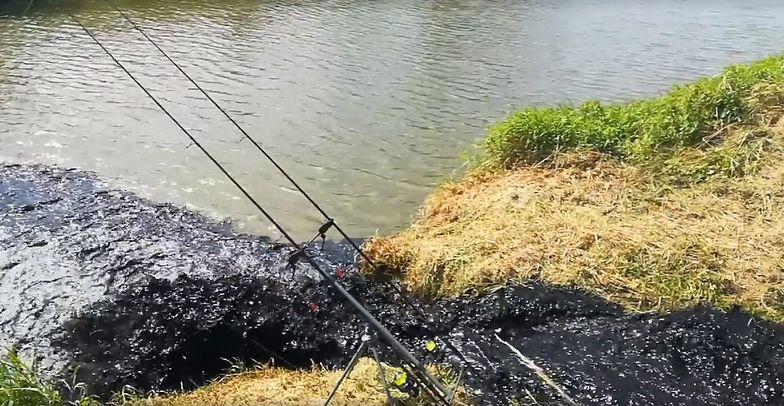 Wędkarze łowili ryby w Wiśle. Nagrali, jak do rzeki wlewa się czarny potok