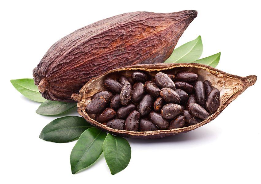 Nieprzetworzone ziarna kakao