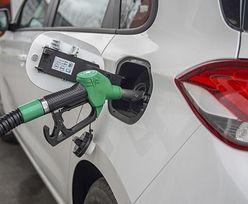 Ograniczają wydobycie ropy. Co z cenami na stacjach? Analitycy komentują