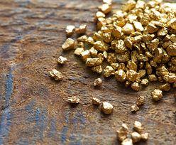 """Dżihadyści łupią złoto z nielegalnych kopalni. """"Europa trafi Afrykę"""""""