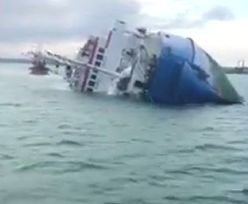 Przewrócił się wielki statek. Dramat 14 tysięcy zwierząt na Morzu Czarnym