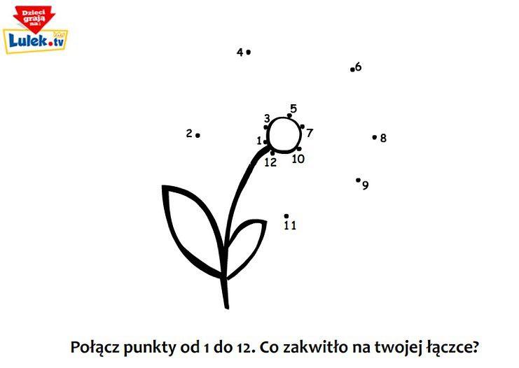 Kwiatek - kropkowanka