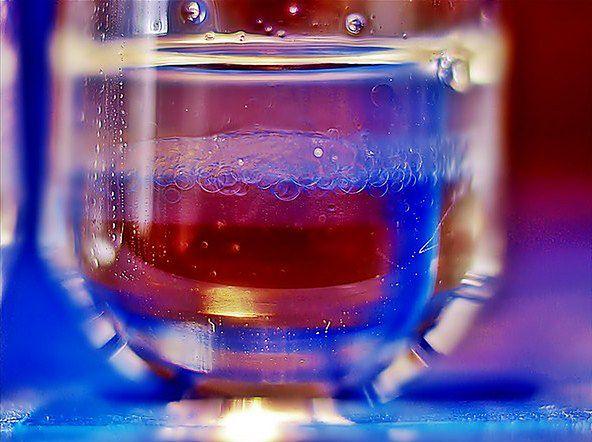 Zdjęcie próbki in vitro