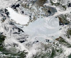 Niepokojące zjawisko w Arktyce. To skutek globalnego ocieplenia