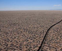 SOS dla Ziemi: Francuscy naukowcy biją na alarm