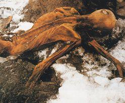 """Wyjaśnili śmierć sprzed 5000 lat. Wiemy, jak zginął """"człowiek lodu"""""""