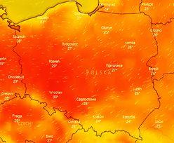 Pogoda. Padnie rekord upałów? Już w poniedziałek ponad 30 st. C