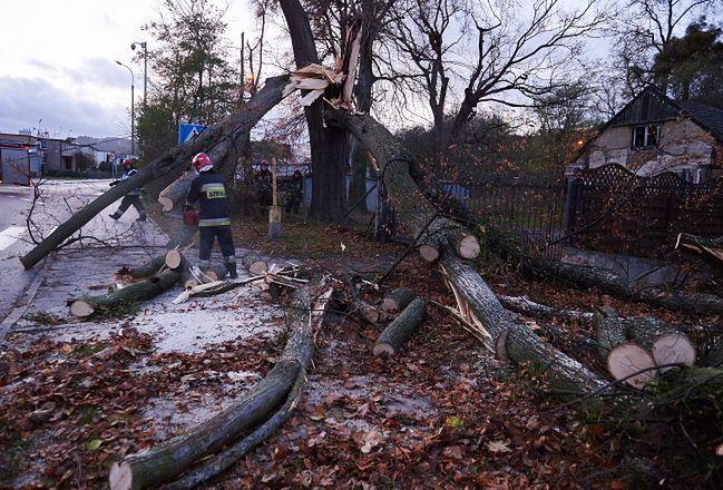 Ogromne wichury nad Polską. Straż pożarna walczy z wiatrem (zdjęcie ilustracyjne)