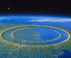 Asteroida, która zabiła dinozaury miała długotrwały efekt. Naukowcy zaniepokojeni odkryciem