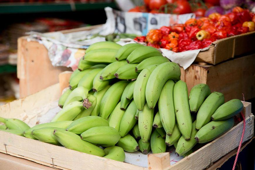 Plantany możemy jeść po ugotowaniu lub smażeniu