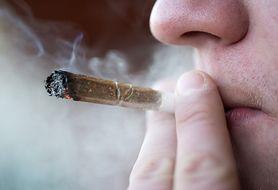 Rzucasz palenie? Wypróbuj papierosy z zielonej herbaty