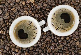 Fakty i mity o kofeinie. Czy posiadasz taką wiedzę, by je odróżnić?