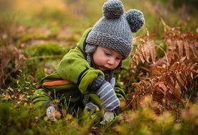 Jak na co dzień wspierać odporność dziecka?