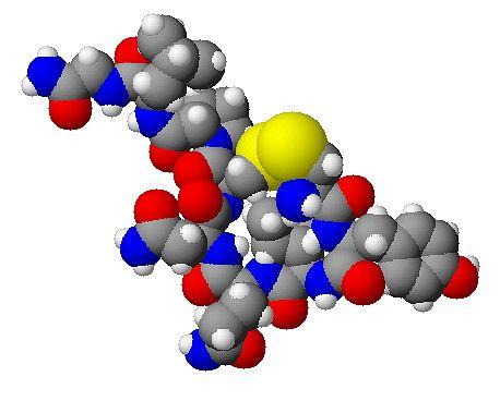 Cząsteczka oksytocyny