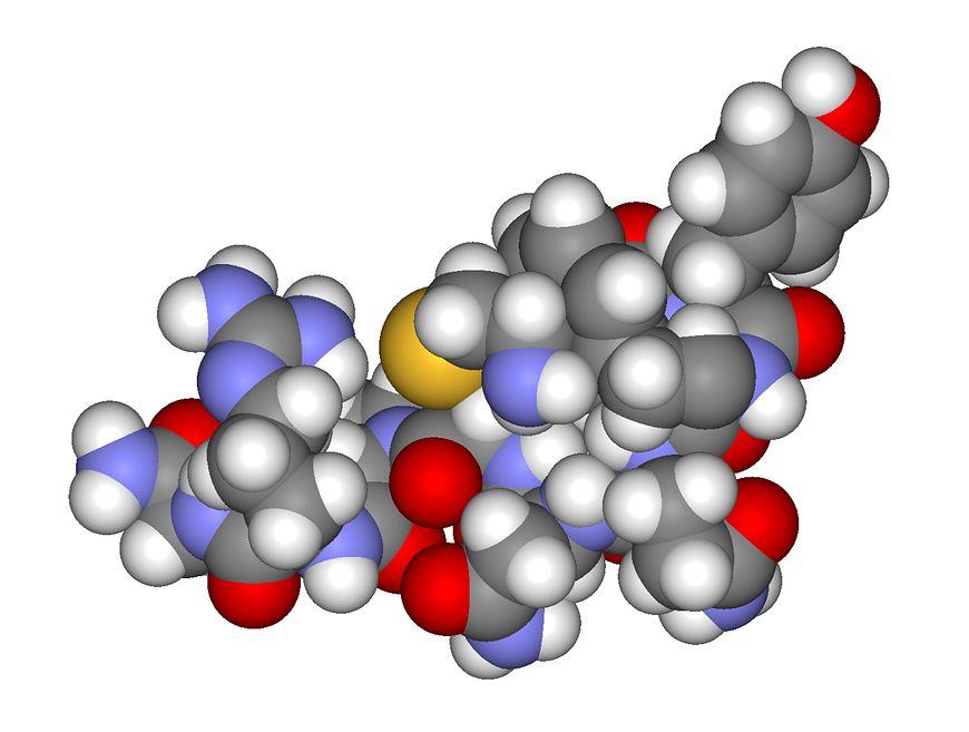 Ilustracja obrazująca budowę cząsteczki wazopresyny