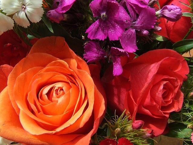 Wąchanie kwiatów