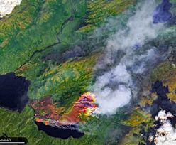 Przerażające zdjęcia satelitarne. Pokazują, jak płonie Arktyka