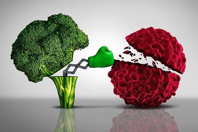 сыроедческая диета поможет бороться с болезнями