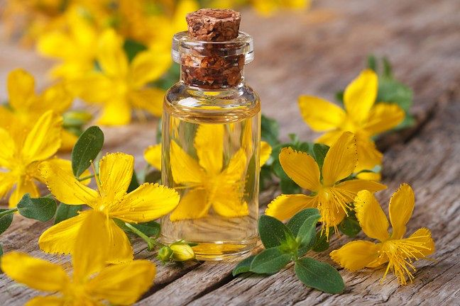 St. John's Wort helps with digestive issues and even fights symptoms of depression.  It is also ideal for varicose veins and venous insufficiency