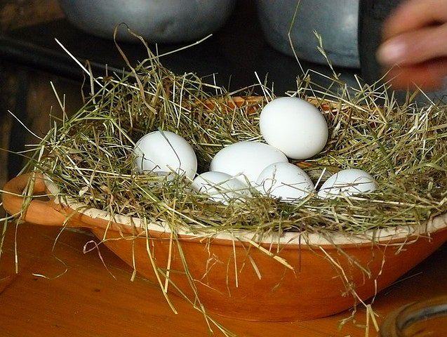 Jajka z chowu ekologicznego