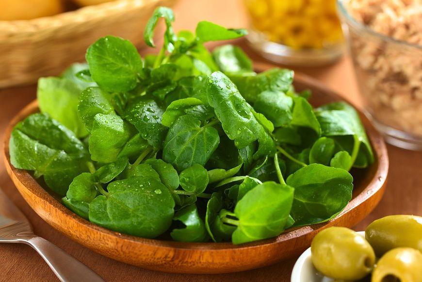 Zdrowe zielone liście
