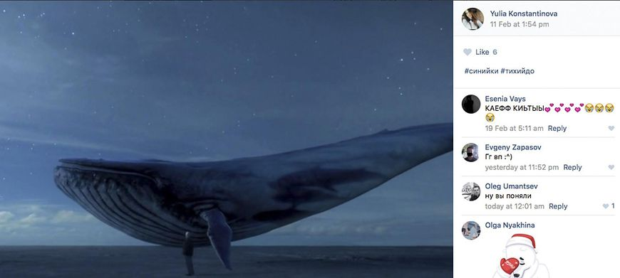 """""""Niebieski Wieloryb""""."""