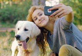 Najmądrzejsze rasy psów. Najszybciej nauczą się komend i są posłuszne