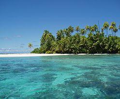 Fale upałów zabiły 70 proc. raf koralowych na archipelagu Czagos